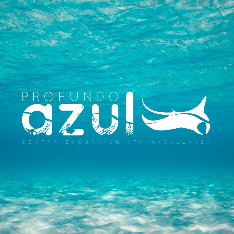 Logo destacado Profundo Azul. the Brand Doctor Agencia de Branding y Marketing Online